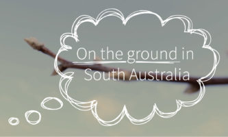On the ground in South Australia